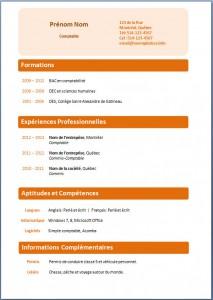 Exemple de CV #218