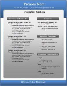 Exemple de CV #226
