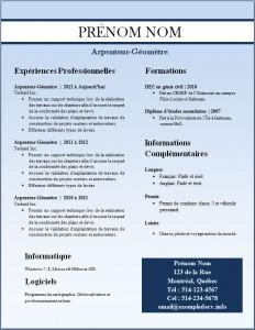 Exemple de CV #247