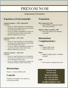 Exemple de CV #248