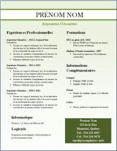 Exemple de CV #251