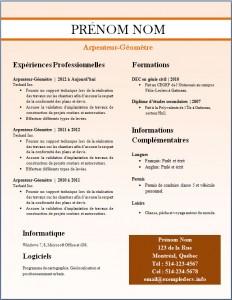 Exemple de CV #253