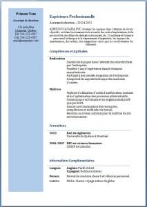 Modèle et exemple de CV #195
