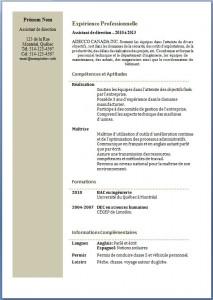Modèle et exemple de CV #197