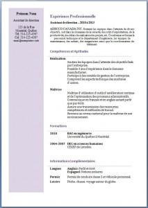 Modèle et exemple de CV #200