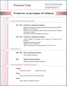Exemple de CV #270