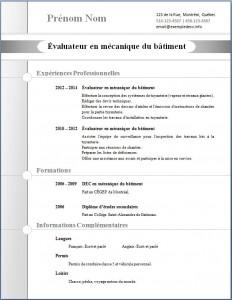 Exemple de CV #274