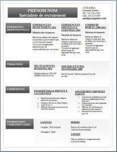 Exemple de CV #284