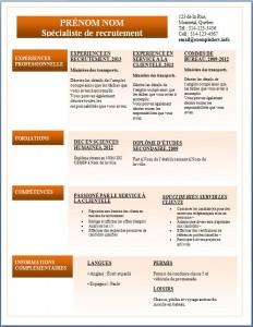 Exemple de CV #288