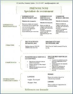 Exemple de CV #306