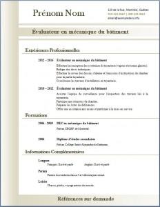 Exemple de CV #311