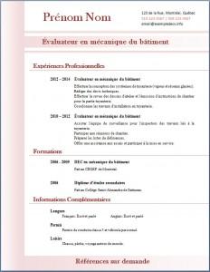 Exemple de CV #312