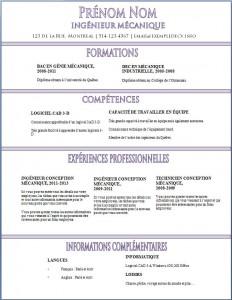 Exemple de CV #349