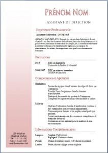 Exemple de CV #354