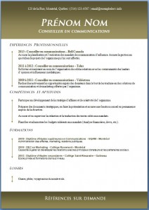 Exemple de CV #424