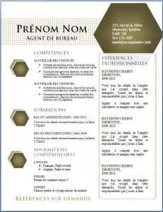 Exemple de CV #440