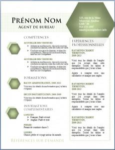 Exemple de CV #442
