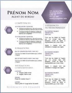 Exemple de CV #443