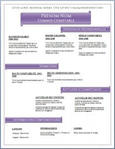 Modèle de CV #471