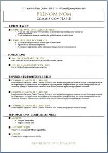 Exemple de CV #544