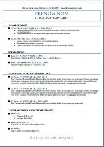 Exemple de CV #545