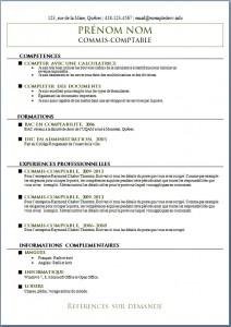 Exemple de CV #547
