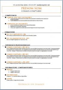 Exemple de CV #549