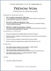 Exemple de CV #599