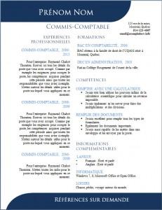 Exemple de CV #500