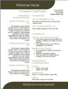 Exemple de CV #502