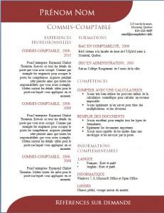 Exemple de CV #503