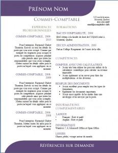 Exemple de CV #505