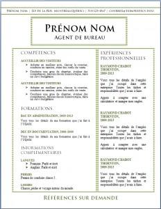 Exemple de CV #517