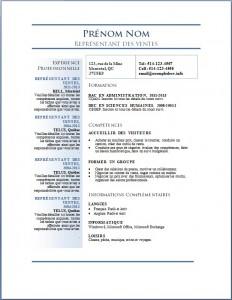 Exemple de curriculum vitae #677