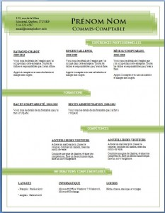 Exemple de CV #687