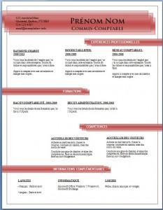 Exemple de CV #688