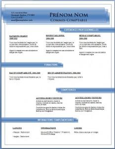 Exemple de CV #689