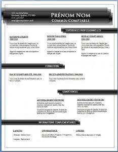 Exemple de CV #690