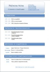 Exemple et modèle de cv gatuit #796