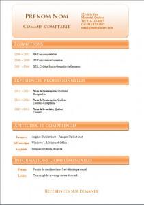 Exemple et modèle de cv gatuit #801