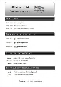 Exemple et modèle de cv gatuit #802