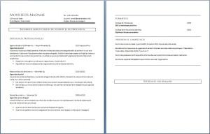 curriculum_vitae_agent_de_securite