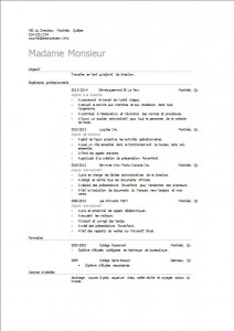 curriculum_vitae_adjoint_adjointe_de_direction