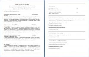 curriculum_vitae_magasinier_magasiniere