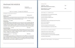 exemple_de_cv_commis_de_bureau