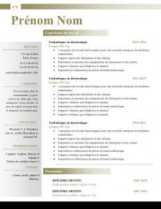 Modele-de-cv-word-880-page0001