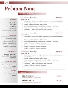 Modele-de-cv-word-881-page0001