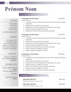 Modele-de-cv-word-883-page0001