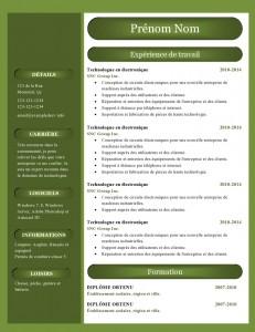 modele_de_cv_word_888-page0001